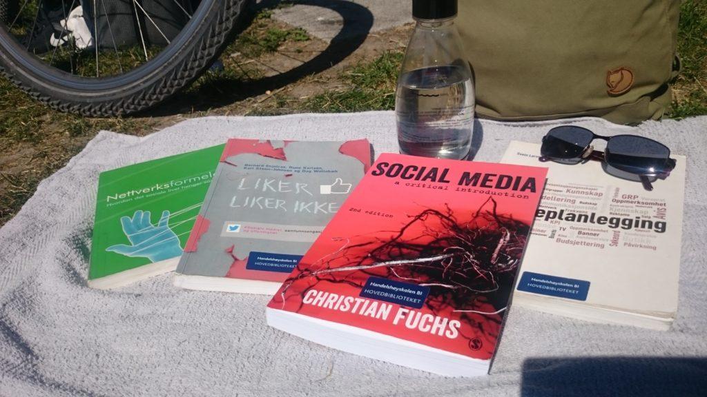 Flere fagbøker fordøyet i løpet av sommeren, og noen å sette i gang med.